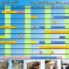 التقويم السنوي